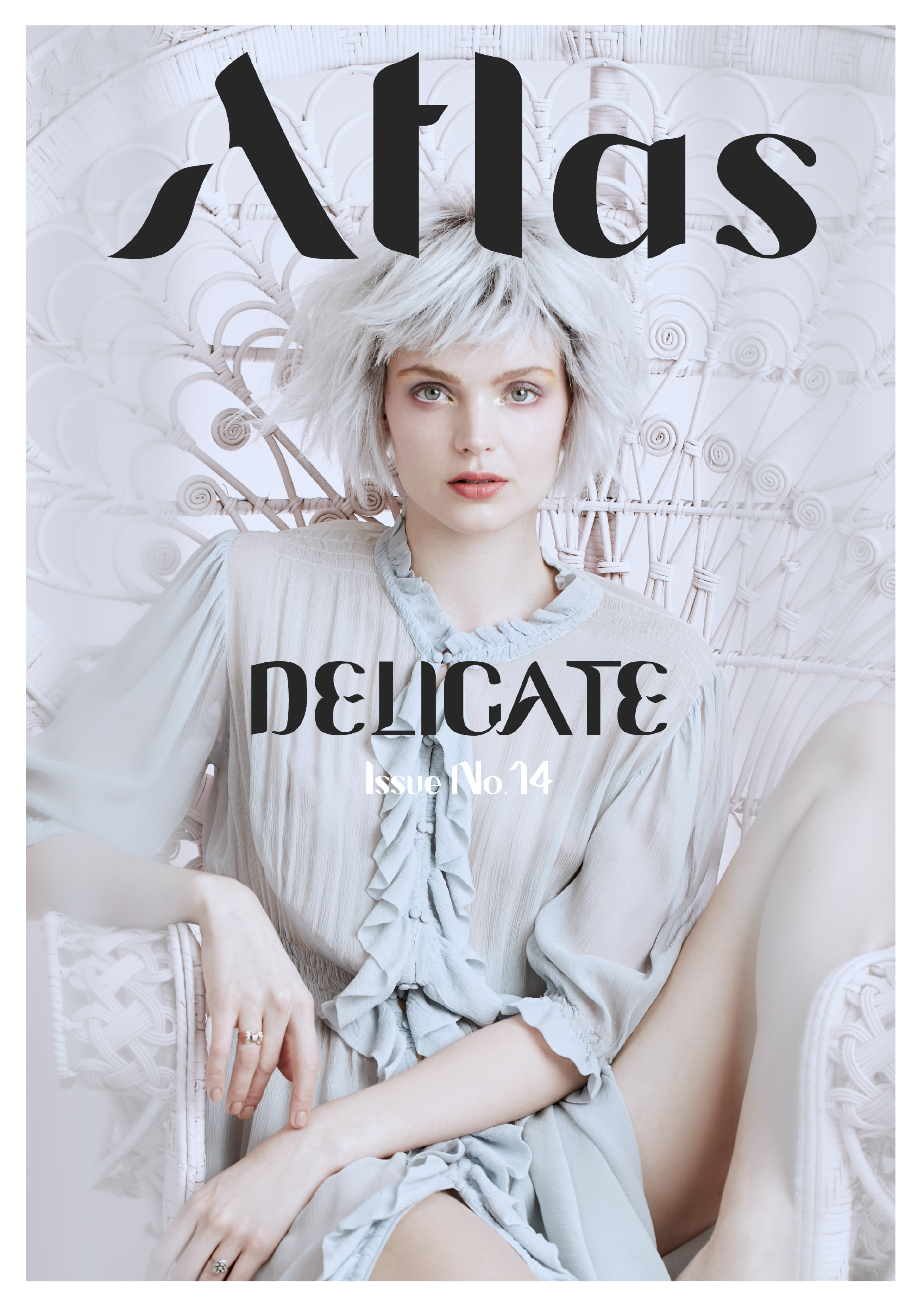 Delicate Issue - Front Cover[1] (1)